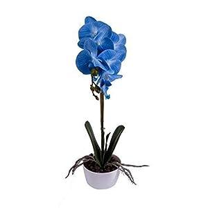 IMIEE Phaleanopsis Arrangement with Vase Decorative Artificial Orchid Flower Bonsai (Blue)