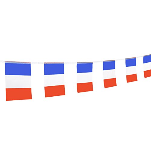 TSMD France Flag, 100 Feet French Flag National Country Pennant Flags Banner,Party Decorations for Grand Opening,World Cup,Olympics,Bar,School Sports Event,International Festival Celebration