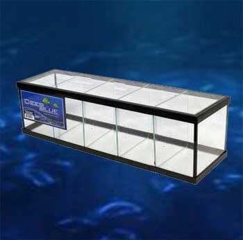 Deep Blue Professional ADB11006 Glass Standard 5-Way Betta Aquarium Tank Kit, 2.3-Gallon by Deep Blue Professional