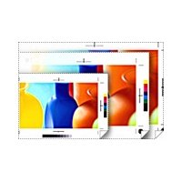 (Epson Standard RC Proofing Paper - 24