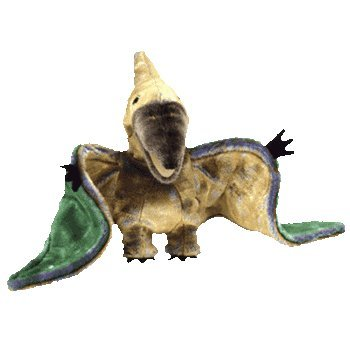 34da4e7b503 Amazon.com  Beanie Buddies Swoop The Pterodactyl Dinosaur Bird - Ty ...
