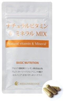 ナチュラルビタミン&ミネラルMIX 90カプセル入り×3袋(約90日分 750円おトク) B078NN4S51