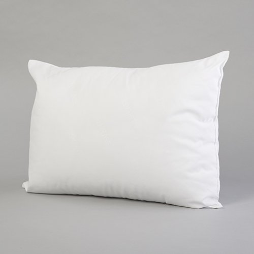 Bestselling Pillow Inserts