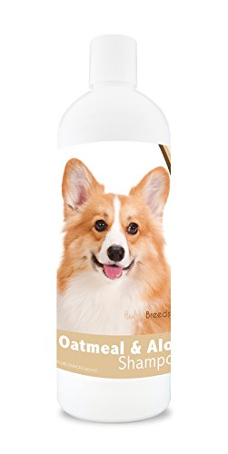 Healthy Breeds Dog Oatmeal Shampoo with Aloe for Pembroke Welsh Corgi - Over 75 Breeds - 16 oz - Mild and Gentle for Itchy, Scaling, Sensitive Skin - Hypoallergenic Formula and pH Balanced (Best Dog Food For Pembroke Welsh Corgi)