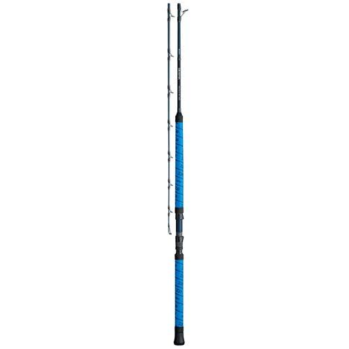 (Daiwa, Proteus WN 1 Piece Casting Rod, 7'6