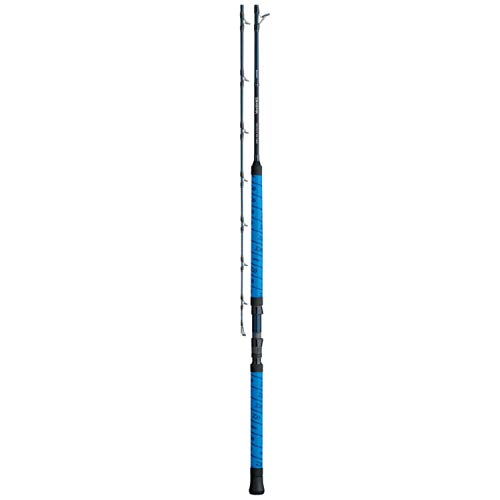 Daiwa, Proteus WN 1 Piece Casting Rod, 7 6 Length, 55-100 ln Line Rate, Heavy Power, Fast Action