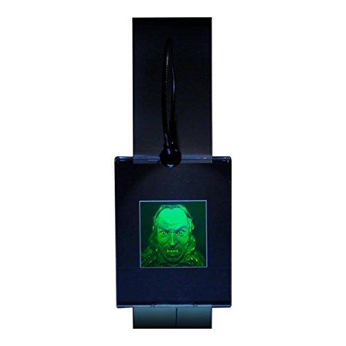 Brain//Skull hologram Deskstand Photopolymer Film Anatomically Accurate