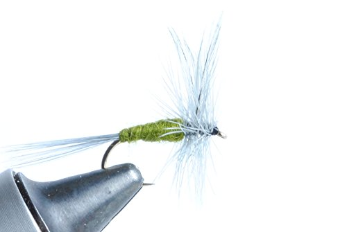 Blue Wing Olive Dry Fly, 6-Pack (#18)