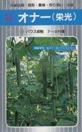 【キュウリ種子】 オナー (埼玉原種育成会)350粒 B00ANEHIN0
