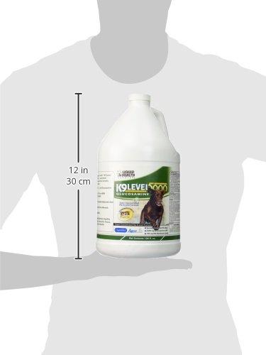 For Animals-K-9 Level 5000 Glucosamine Liquid Health 128 oz Liquid