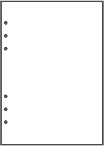 (A5 Blank Paper - 150 Sheets (300 Pages) - 6 Hole Punched - 100 GSM (24 lb.) - for FiloFax, A5 Planners, Organizers, and Binders - 148mm x 210mm (5.83