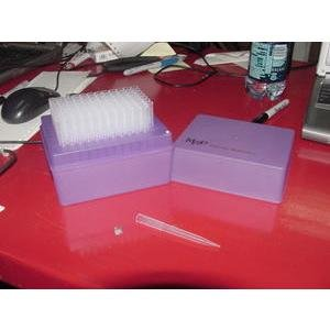 MOLECULAR BIOPRODUCTS 3802 PIPET TIPS 1200uL - Molecular Bioproducts Tips