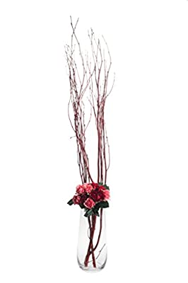 """Flower Glass Vase Decorative Centerpiece For Home or Wedding by Royal Imports - 12"""" Tall Clear Glass U Shaped Rose Vase 12x3.5 inch opening"""