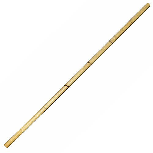 (BambooMN 66