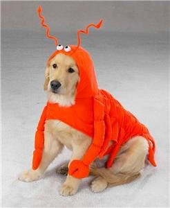 LARGE LOBSTER PAWS Dog Halloween Costume Paws Dog Halloween Costume