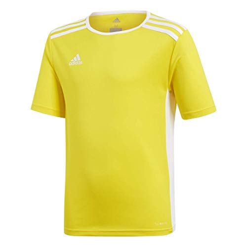 adidas Youth Entrada 18 Jersey, YellowWhite, Large
