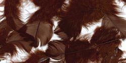 ZUCKER Feather (TM) - Loose Turkey Plumage Dyed - Brown