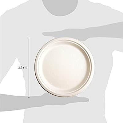 Green Earth Bagasse (Sugarcane)Compostable 9 Inches Round Plate