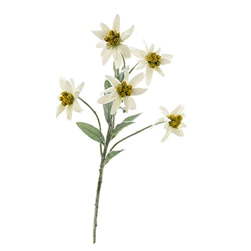 MARJON FlowersSet of 3 Artificial Edelweiss Sophia with 5 Flowers, White, 3 Pieces Artificial Flower/Fake Flower (Leaf Primrose Five Light)