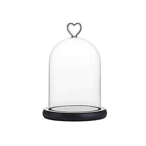 (Whole Housewares 5.7D X 8.3H Decorative Clear Glass Dome with Black MDF Base/Tabletop Centerpiece Cloche Bell Jar Display Case)