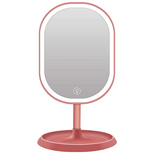 led Light up The Mirror with Touch Screen 3-Tone Light with Storage -