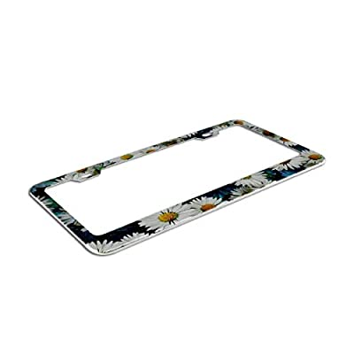 Wildflower Daisy Flower Pattern in A Watercolor Style License Plates Frames Black and White Daisy License Plate Covers Chrome License Plate Frame Tag Holder 2 Holes: Clothing