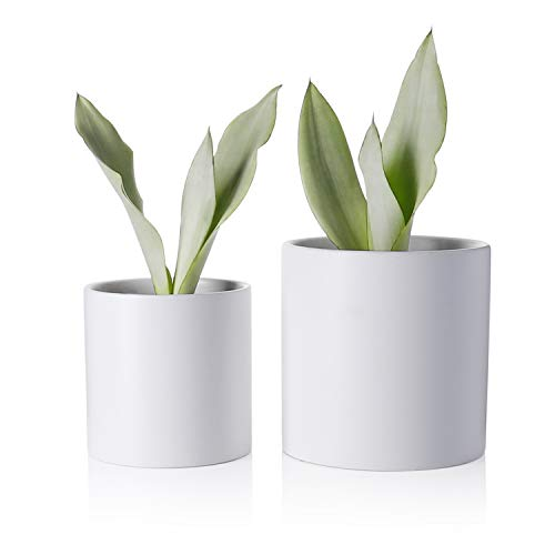 Greenaholics Plant Pots – 5.9 + 4.7 Inch Matt Ceramic Planter with Drainage Hole for Flower, Cactus, Succulent Planting, Set of 2, White