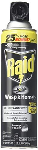 Raid Wasp & Hornet Killer 33 Spray, 14 Ounce (3 Pack)