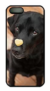 iPhone 5 5S Case, Peanut Butter Pumpkin Dog Treats Case for iPhone 5 5S Hard Plastic PC Material Black