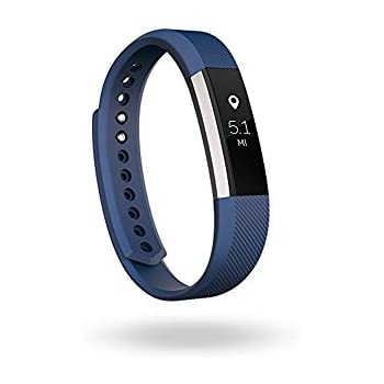 Amazon.com: Fitbit Alta Fitness Tracker, Silver/Blue