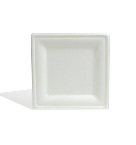 8 Square Plate - 2