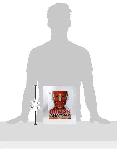 Human Anatomy: DK: 0790778019549: Amazon.com: Books