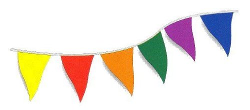 Multi-colored Rainbow Flag Pennant Banner Party Decoration 500' (5 packs)