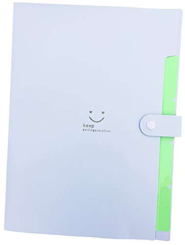 iToolai 5 Pockets Plastic Expanding File Folders A4 Letter Size Snap Closure Paper Organizer, Purple