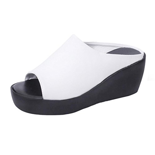 Bottom Slippers, AgrinTol Women Summer Fashion Leisure Fish Mouth Sandals Thick Bottom Slippers