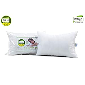 Recron Certified Dream Fibre Pillow (16″x24″)