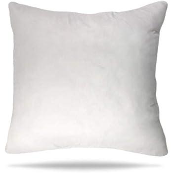 Amazon Com Set Of 2 Pillow Insert 36x36 Decorative