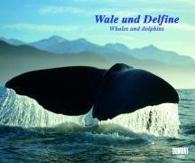 Wale und Delfine - Fotokunst-Kalender 2009
