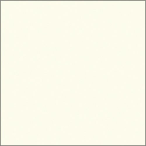 (Savage Background Paper 53 in. x 12 yd. roll white )
