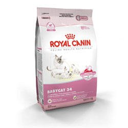 Royal Canin Feline Health Nutrition Babycat 34 Dry Kitten Food, My Pet Supplies