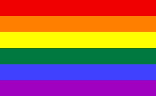Shoe String King SSK Rainbow - Gay Pride Outdoor Flag - Large 3' x 5', Weather-Resistant Polyester ()