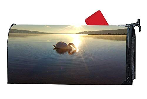 Tollyee Animal Bird Lake Swan Sweden S?tila Magnetic Mailbox Cover Garden Magnetic Magnetic Mailbox Cover 9