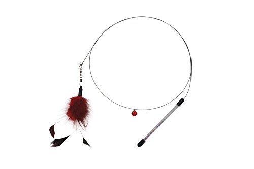 Interactive feather cat teaser. Flexible stainless steel wire swing & acrylic handle. 3.5 feet long. Awake your cat's natural instinct with cat teaser toys from Evelyn (Chicken - Cat Wire