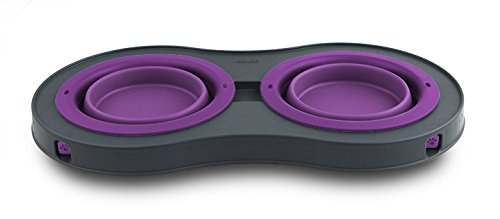 Dexas Popware for Pets Double Elevated Pet Feeder, Small, Gray/Purple