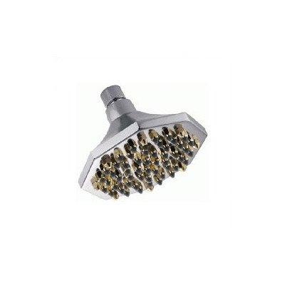 6 Octagon Shower Head Finish Chrome with Polished Brass