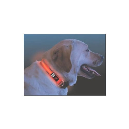 NEW Nite Dawg – LED Dog Collar – LARGE, 18-27″ – RED (Pet Supplies), My Pet Supplies