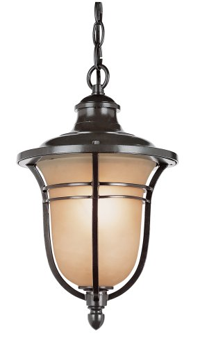 Bronze Amber Glass Lantern (Trans Globe Lighting 5704 ROB Outdoor Hanging Pendant with Amber Glass Shade, Rubbed Oil Bronze)