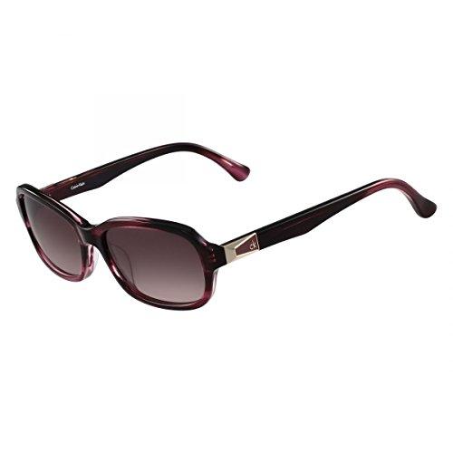 Calvin Klein Plastic Frame Purple Lens Ladies Sunglasses (Calvin Klein Plastic Frames)
