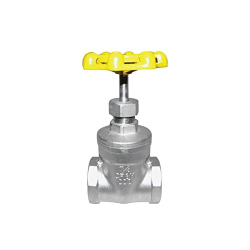 Red-White Valve 12RW882 Stainless Steel Gate Valve Threaded, 1/2''