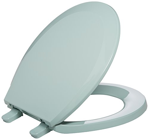 Kohler K-4662 Lustra Q2 Round Closed-Front Toilet Seat with Quick-Release and Qu, Seafoam -